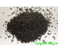 Горчица семена черные