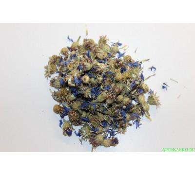 Василек цветки