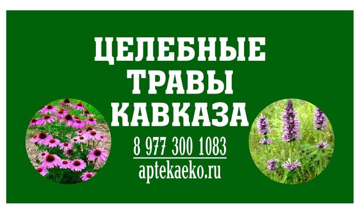 Целебные травы кавказа